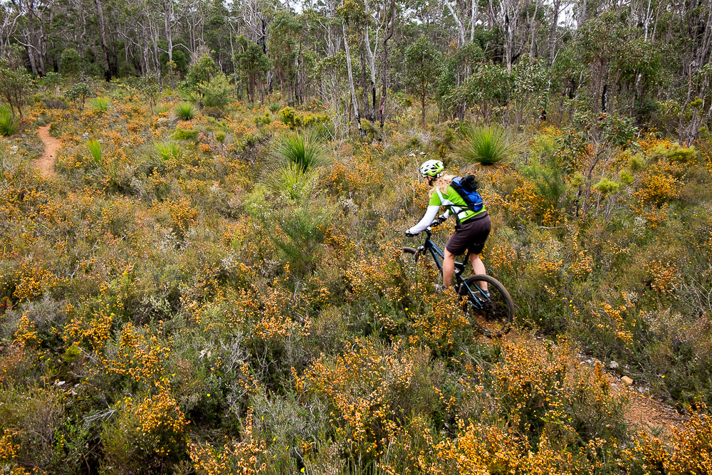 Mountain biking at Carters Road in Margaret River