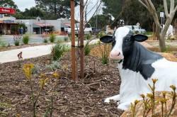 Cowaramup Town Western Australia