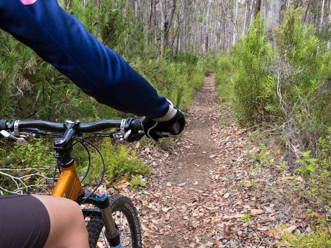 Mountain biking Jedi Loop near Margaret River