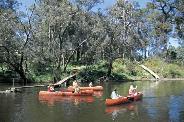 Blackwood River canoeing