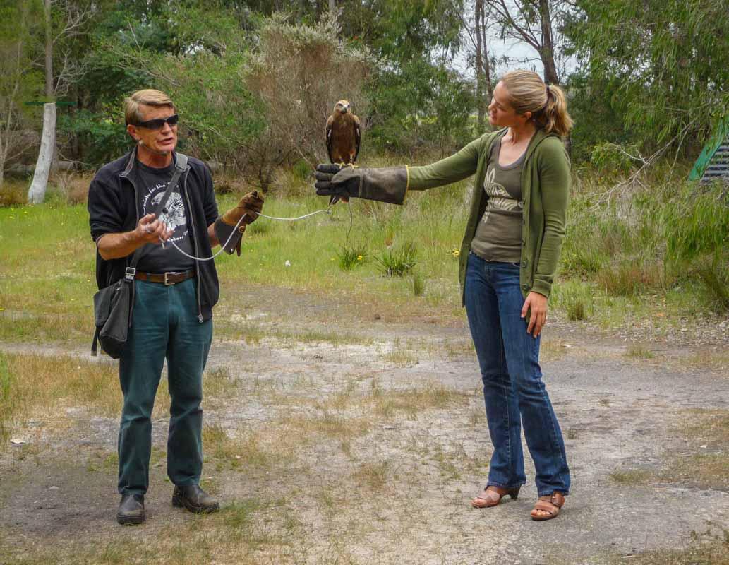 Eagles Heritage Wildlife Center