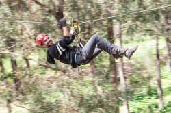 Forest Adventures South West Zip Line