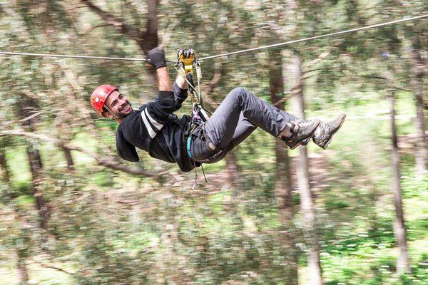 ForestAdventuresSouthWest22911484003476