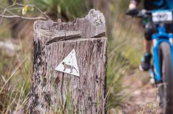 Cape Mountain Bikers