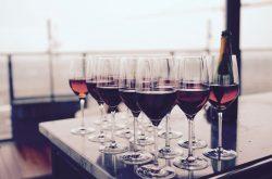 Margaret River Regional Wine Centre tastings