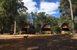 Jarrah Glen Cabins near Nannup