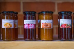 Tasty Jams at Maggie's Place at Augusta